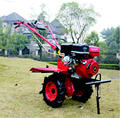 Hot sale!9hp Great Gasoline Motor Hoe for Farming
