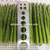 HACCP certificate green asparagus frozen food for sale in China