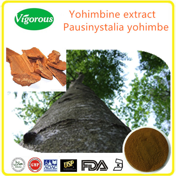 Yohimbe Bark Extract Powder high quality/8%-98%Yohimbine Yohimbe Bark Extract