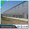 Xinze Cheap Polycarbonate Agricultural Greenhouse Low