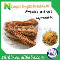 High Quality Angelica sinensis extract/angelica root extract for women health care