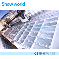 Snow world Block Ice Plant Pice Ice Block Making Machine for Sale