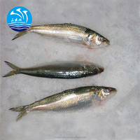 Frozen Seafood Best Whole Round Sardines