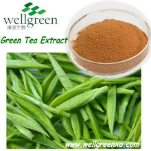 High quality natural slim China green tea extract powder for cancer prevention