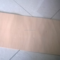 High quality hard maple species for create your own longboard/cruiser longboard