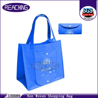 Lead-free/ AZO Free Pictures Printing Recycled Woven Plastic Tote Bag