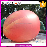 3m Customized Inflatable Pawpaw Replica For Advertising W76