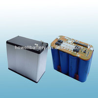 lithium 12V 30ah lifePO4 rechargeable battery packs