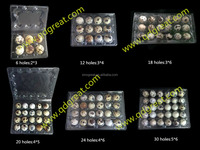 China supplier Manufacture clear disposable blister plastic quail eggs tray 24 holes slots