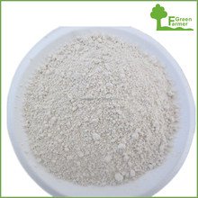 pure quality grade A garlic powder
