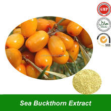 Sea Buckthorn Fruit or Berry Extract Powder Extract from Sea Buckthorn Plant