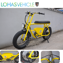 Lohas Bicycle Fat Boy Electric Bicycle with Bafang Motor with two seats