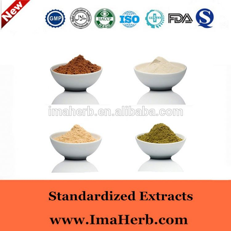 GMP Manufacture ISO Certified epemedium extract icariin 10%-20%