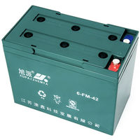 12V42AH china batteries manufacturer electric tricycle