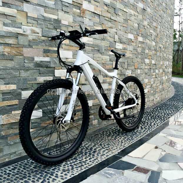Changzhou Yunshine green power electric bicycle, new design best e bike with large production capacity