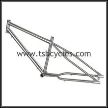 customized 26 beach cruiser bicycle bike frame with special material TSB-ZJS0901