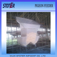 hot sale new automatic pigeon feeder