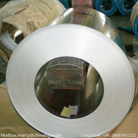 Hot galvanized steel strip comply with ISO/ASTM/AISI/JIS/EN standard