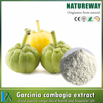 China manufacturers 100% pure natural Garcinia Cambogia Extract 50%, 60%, 70%, 95%HCA wholesale Garcinia Cambogia Extract Powder