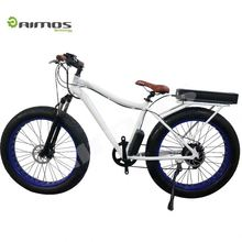 "22"" 48V 250W Mountain Exercise Electric Bike non-folding Fat tyre Beach electric bike/bycicle/ebike"