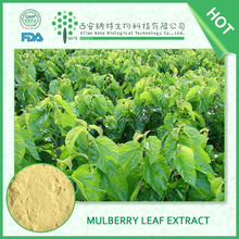 Manufacturer supply Mulberry Leaf Extract 5% DNJ in bulk with competitive price