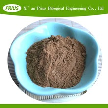 top quality natural herb extract Basket Fern Extract