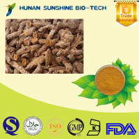 Strong Liver Function Natural Curcumin Extract Turmeric 95% Curcuma Longa Extract