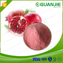 100% Natural Pomegranate Juice Powder for stock