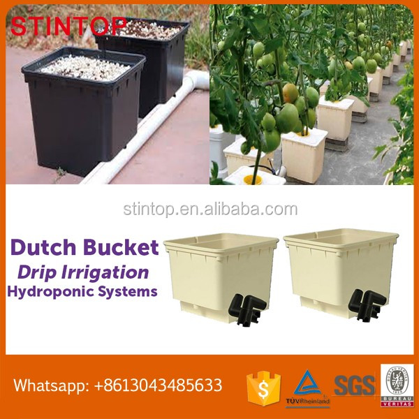 Deep Water Culture (DWC) Hydroponic System Bato Bucket For Tomatoes Agricultural Planting