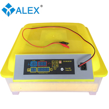 Family and household use 12 Voltage battery incubator 48 eggs chicken incubators for sale