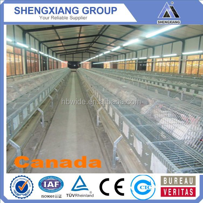 Installation and Management easy direct manufacture Metal rabbit cages breeding (20 years)
