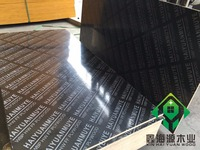 15/18mm film faced shuttering plywood from XINHAIYUAN WOOD