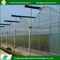 Good Quality Multi Span PE Agricultural