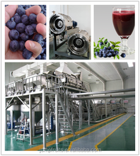 turn key buleberry concentrate puree/jam/paste/ ketchup production line