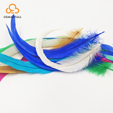 Cheap Decorative Colorful Rooster Feathers For Hair Extensions