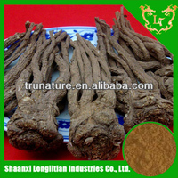 Kill pain stuff powdered angelica root extract/nice quality angelica powder from Chian professional manufacturer price is good !