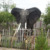 Large animal sculptures life size fiberglass elephant