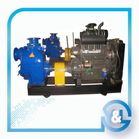 China Electrical Industrial Dewatering solid Slurry Pump Manufacturer