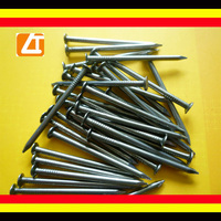 "common nails/common iron nail/common wire nail(1/2""-8"")"