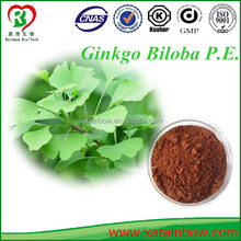 High quality ginkgo biloba extract 24% Flavones 6.0% lactones by HPLC