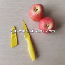 small fine stainless steel tomato vegetable kitchen fruit knife