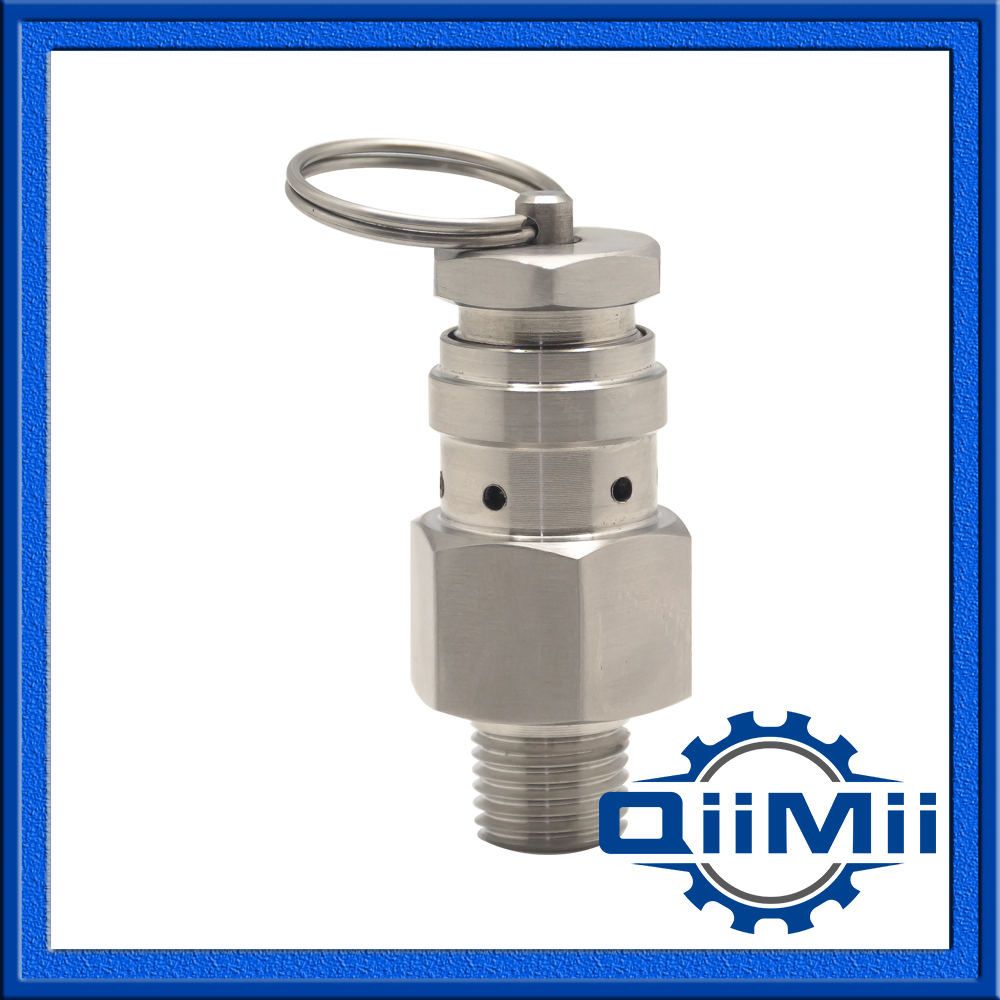 1/4 Inch Sanitary Stainless Steel Mini Type Safety Valve