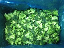 IQF frozen Broccoli with good quality and hot price