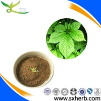 Natural Pentaphyllum gynostemma Extract with Gypenosides