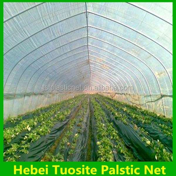 Black waterproof plastic Ground cover for greenhouse