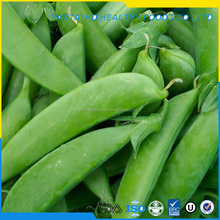 Wholesale IQF Sugar Snap Pea