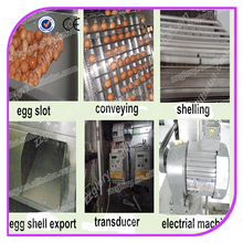 Popular Various automatic hard boiled egg peeling machine / egg peeler