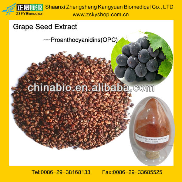 Professional Factory Provide Natural Grape Seed Extract 95%, 98% Procyanidine