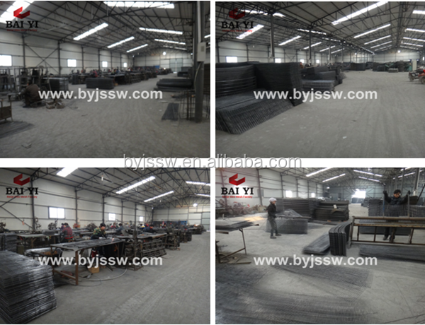 Baiyi China Factory Supply Various Hen/Layer Chicken Cage