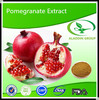 Best Quality Pomegranate Bark Extract Powder for Anti-cancer